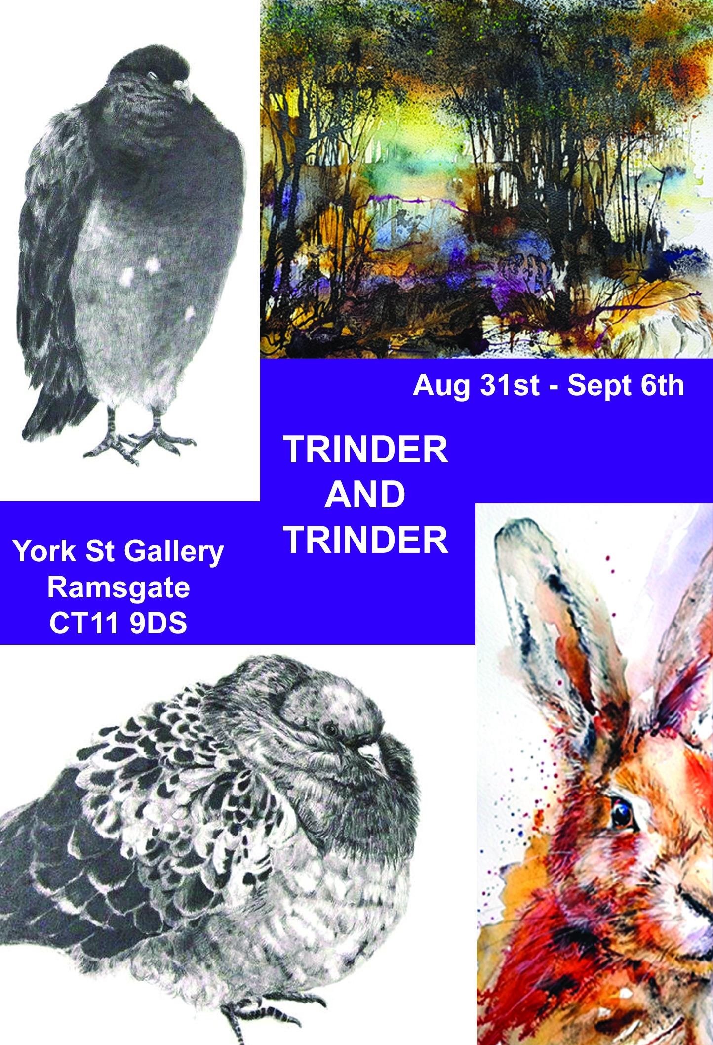 TRINDER AND TRINDER YORK ST